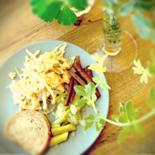 朝食と庭の植物