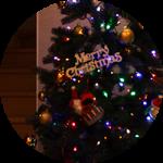 【WEB内覧会17】家族と共に変化する階段横スペース(後編)〜四季折々、将来の使い方。そして、メリークリスマス!!