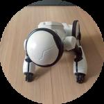 入居3年(3) スマートハウスにロボットの時代