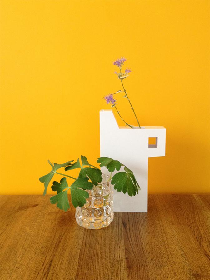 テーブルの植物2