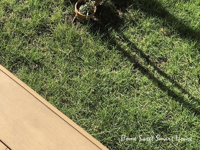 芝生とウッドデッキのある庭の写真 一条工務店 i- smart アイスマート 注文住宅 リクシル ウッドデッキ 樹ら楽 高麗芝