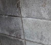 築40年の塀 左が未掃除、右が高圧洗浄済み