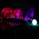 ゆったりと北欧時間。メッツァの「チームラボ森と湖の光の祭」に行ってきました。(後編)